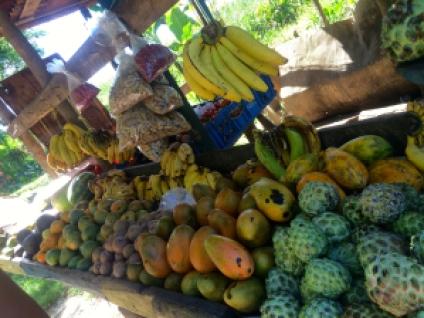 Jamaica fruit stand