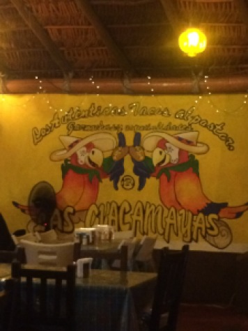 Las Guacamayas Cabo fittwotravel.com